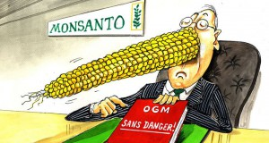 Monsanto_Turns_Project_Because_Finance_Losses