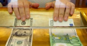 The_Euro_fell_to_a_one-year_low_against_the_US_dollar