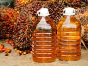 Record_demand_for_palm_oil_has_forced_Indonesia_to_raise_export_duties