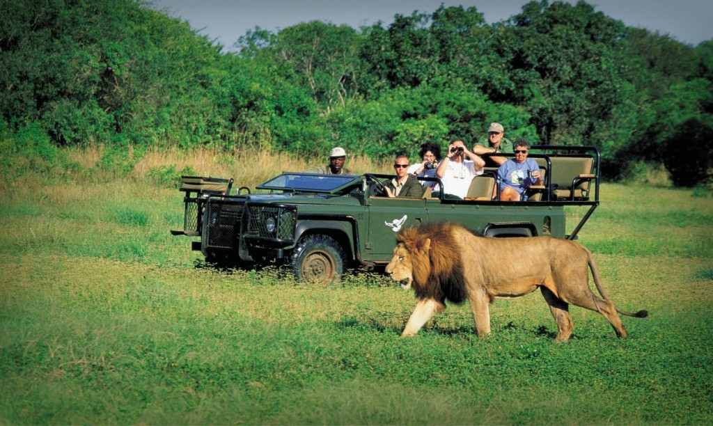 After_two_years_of_decline_in_tourism_in_Africa_showed_an_increase_of_8%