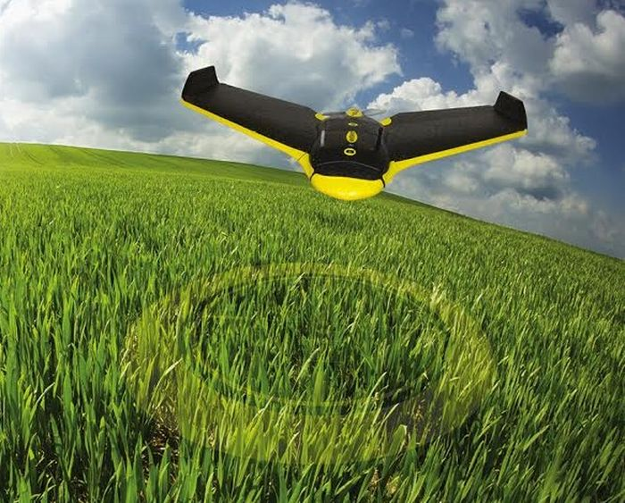 Russia_May_Start_Program_Leading_Innovations_Agricultural_Industry_Drones_Usage