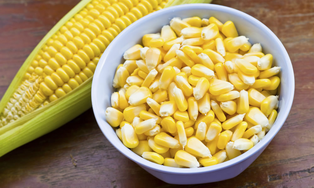 Cheap_American_corn_has_caused_a_surge_of_migration_from_Mexico