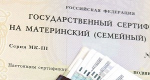 Members_want_to_share_funds_from_the_maternal_capital_among_all_Russian_families