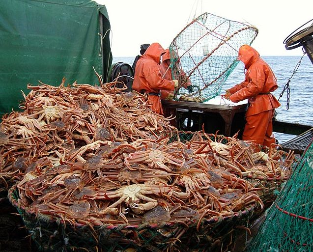The_shipbuilders_went_for_the_crab