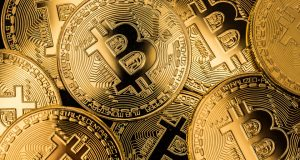 Lay_bitcoin_and_not_die