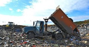 In_a_dump_in_Kuchino_found_two_criminal_cases