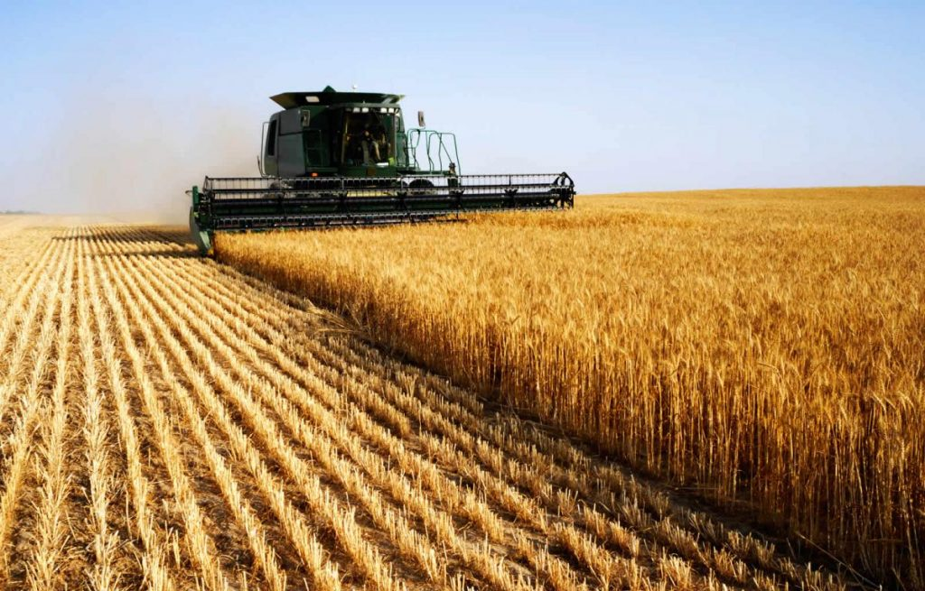 Foreign_banks_have_lost_millions_of_dollars_in_agriculture_in_the_Chelyabinsk_region