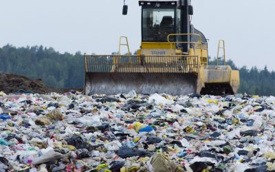 Arkhangelsk_region_has_pledged_10_billion_rubles_for_the_reception_of_the_Moscow_garbage