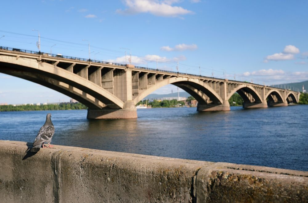 During_the_year_in_Russia_collapsed_100_bridges._And_it_won't_end