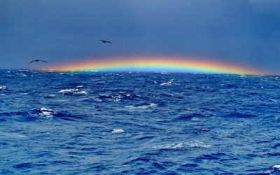 Ocean The Bermuda Triangle Rainbow